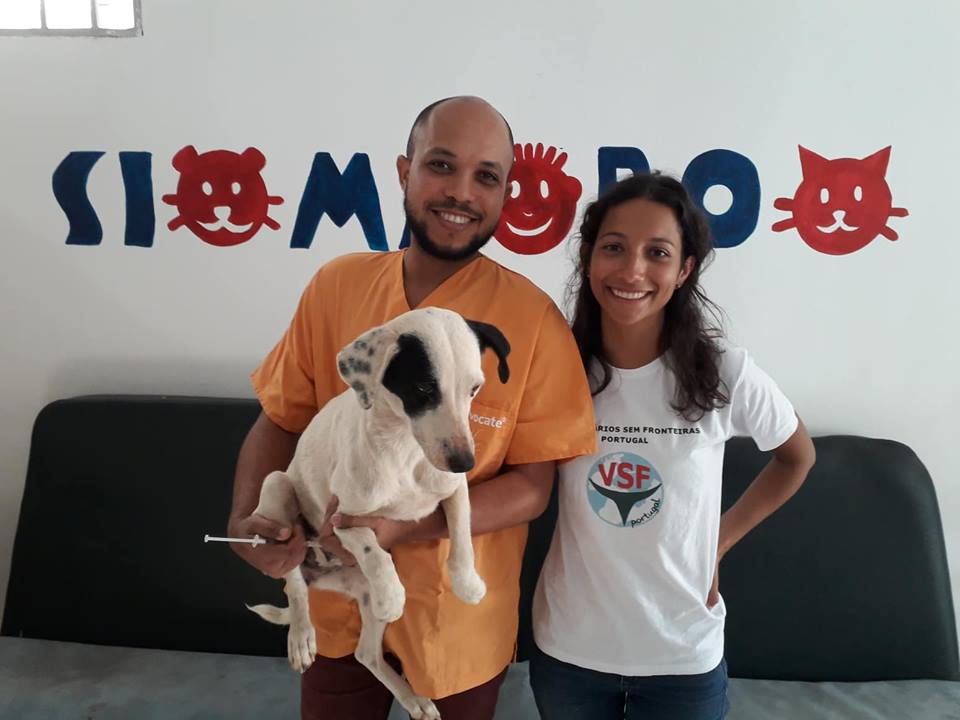 First mission of Vet without Borders Portugal in Sao Vicente