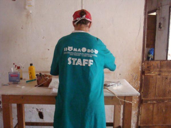 Simabo vet surgery dog
