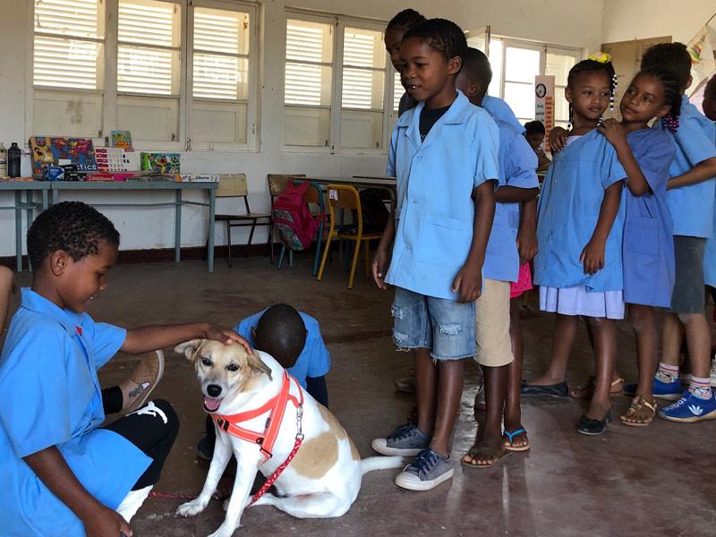 school children simabo